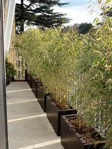 bambou de balcon 201 pingl 233 par chen yu sur apartment balcony ideas terrasse