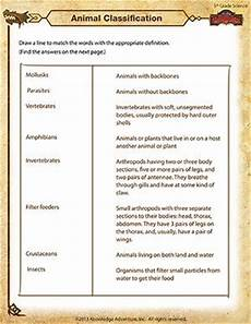 classifying plants worksheets 3rd grade 13524 the world s catalog of ideas