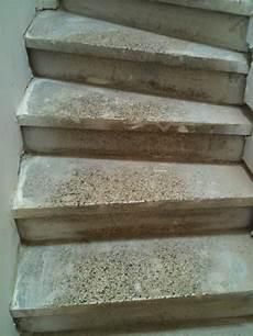 Recouvrir Escalier En Forum Ma 231 Onnerie Fa 231 Ades
