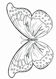 Malvorlagen Erwachsene Quiz Butterflies Schmetterlingszeichnung Kinder Malbuch