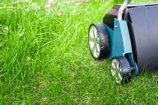 Rasen Vertikutieren 187 Wann Ist Der Beste Zeitpunkt