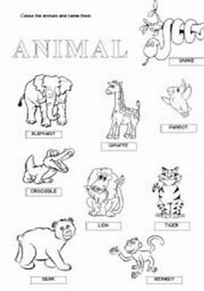 animal recognition worksheets 14025 animals esl worksheet by anna22