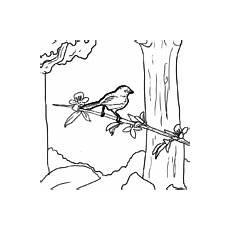 Malvorlage Vogel Auf Ast Kostenlose Malvorlagen V 246 Gel Zum Herunterladen Ausdrucken