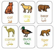 arabic animals worksheets 19777 tj homeschooling arabic animal vocabulary flashcards these picture flashcards include the