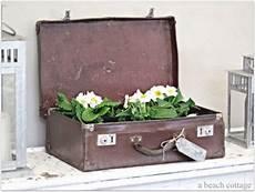 alte koffer deko deko ideen f 252 r den alten koffer blumenpflanzer benutzen