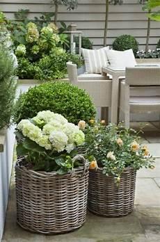 Ideen Für Den Vorgarten - vorgartengestaltung ideen vorschl 228 ge wie sie den
