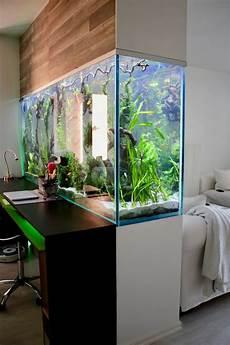 aquarium als raumtrenner die besten 25 aquarium raumteiler ideen auf