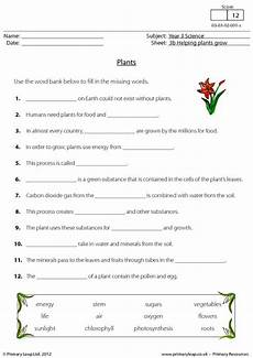 year 8 science worksheets uk 12434 science plants worksheet primaryleap co uk