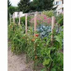 tuteur tomate pas cher tuteur 224 tomates 1 50 cm en bois jardin et saisons