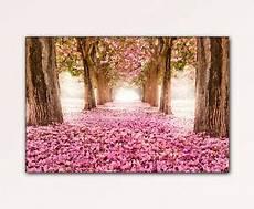120x80cm rosa allee romantik bl 220 ten leinwand wandbild