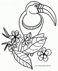 get this free parrot coloring pages to print 39122