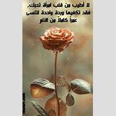 single-green-roses