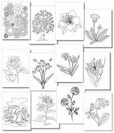 Ausmalbilder Blumen A4 Dein Malbuch Ausdrucken Kostenlos