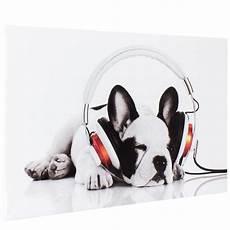 Keilrahmen Bilder Schwarz Weiß - bild keilrahmen hund wei 223 schwarz 60x90cm 22 50 1stk ebay