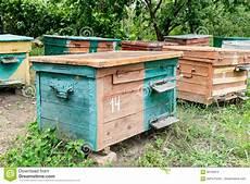 bienenstock das haus bienen im busen der natur