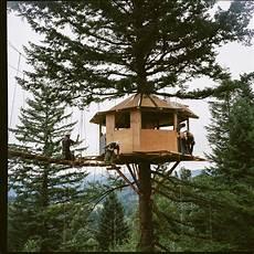 vivre dans une cabane 55967 vivre dans une cabane au milieu de la nature foster huntington