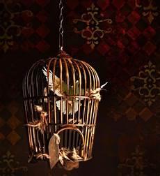 gabbia uccello un uccello in gabbia fusione degli oggetti con akvis
