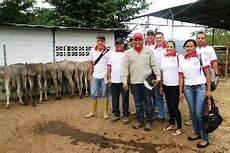 flora y fauna del municipio alberto adriani entregaron 40 burros a productores del municipio alberto adriani de m 233 rida