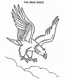 aigle dessin facile the bald eagle coloring page netart