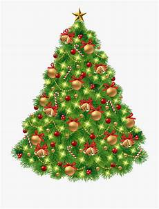tree png clipart transparent background