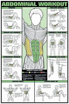 ab work sle exercises and descriptions abdominal workout 24 quot x 36 quot paper poster nfc8 a by