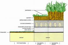 toit terrasse vegetal toiture v 233 g 233 tale apte asso org