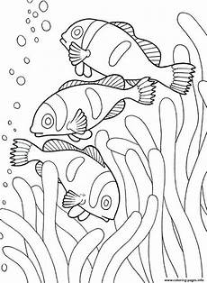 sea creature drawing at getdrawings free