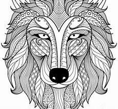 wolf zentangle ausmalbild mandalas