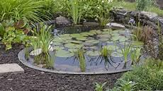 Gartenteich So Wird Ihr Garten Zum Paradies Quelle