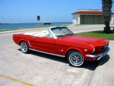 1964 Mustang  Google Search Things My Mom Would Have