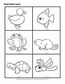 free coloring pages pond animals 17411 1000 images about may insects on ants cycles and insects