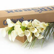wedding flower tips and trends for 2008 budget conscious brides do it yourself wedding flowers