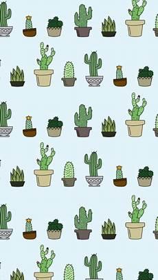 aesthetic cactus iphone wallpaper cactus wallpapers