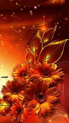 flower images hd gif gifs hermosos flores encontradas en la web