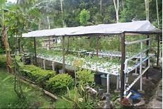 Membuat Desain Taman Hidroponik Di Halaman Rumah