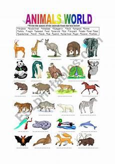 animal world worksheets 14372 animals world esl worksheet by berat