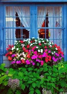 fioriere per davanzale finestra utimissime dall orto giardini a tutto colore 窓 窓辺