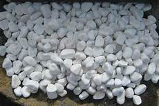 Decorative Pebbles For Your Garden Stones In Auckland Nz