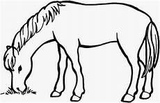 ausmalbilder malvorlagen pferde kostenlos zum