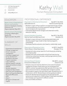 modern resume sle for human resources consultant resume writing services resume writing