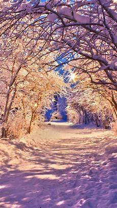 Winter Wallpaper Hd Iphone