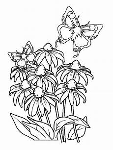 coloring pages of flowers and butterflies coloring home