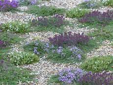 10 couvre sols persistants qu il faut avoir dans