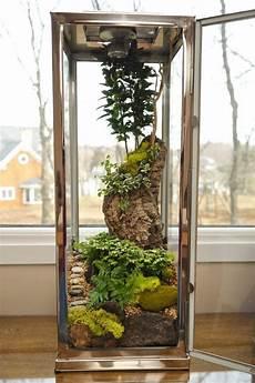 Window Sill Decoration Make A Terrarium In A Lantern