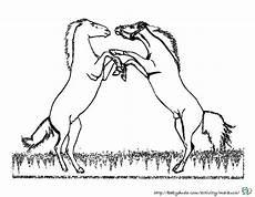Malvorlagen Pferde Zum Ausdrucken Pdf Pferdebilder Ausmalen Pferdek 246 Pfe Ausmalbilder Babyduda