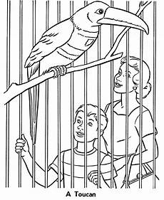 Zootiere Malvorlagen Free Printable Zoo Coloring Pages For