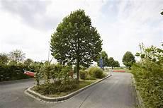 Parkplatz P6 Dortmund Airport