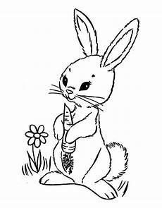 Hase Malvorlagen Chord заяц раскраска