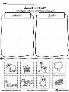 useful animals worksheets 14070 day 32 mammal and reptiles cut and paste worksheet sonlight p4 5 preschool science