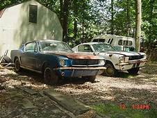 2 1965 Mustang Fastbacks  Post Rusty Muscle Car Photos